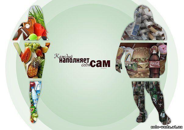 Звезды на диете живая тема смотреть онлайн