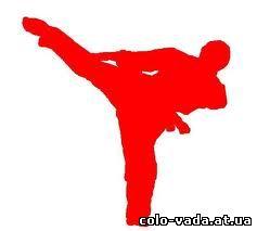 роль водного баланса и питания в тренировочном процессе спортсменов карате